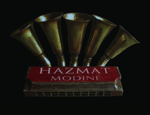 New Hazmat Modine Vinyl