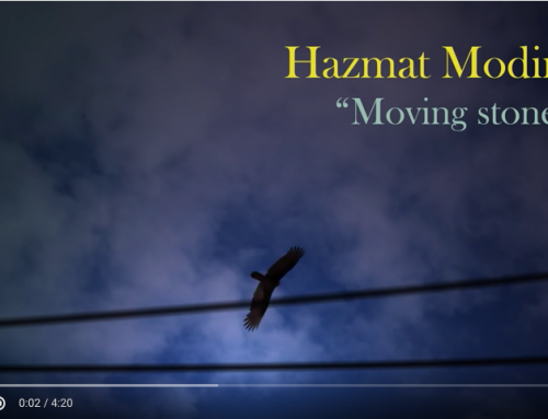 Hazmat Modine – Moving stones – Video